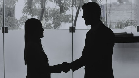 Silhouettes of a woman and a man shaking hands