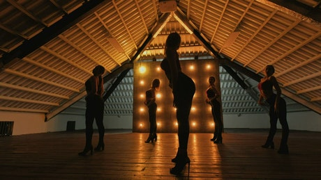 Silhouettes of dancing girls performing at a dark stage