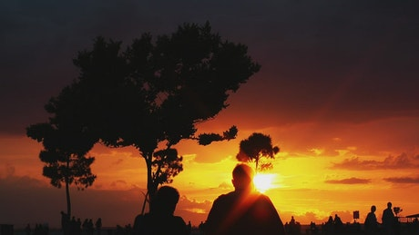 Silhouettes of people in a park during a sunset