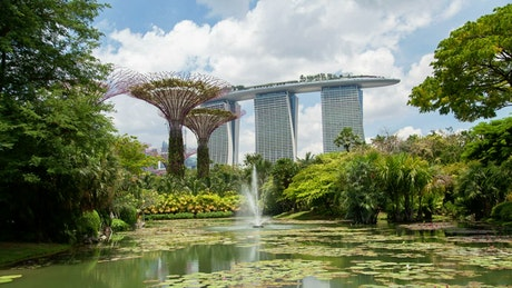 Singapore gardens and fountain in the lake