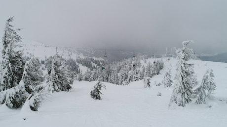 Ski station transporting skiers