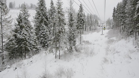 Ski station view of a white winter forest