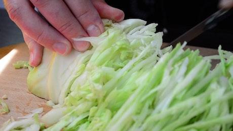 Slicing cabbage, close up