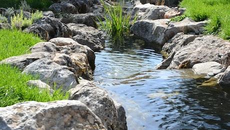 Small garden stream