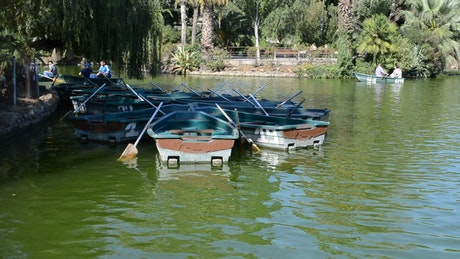 Small rowing boats in a park lake