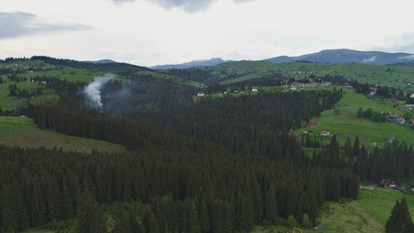 Smoke in a forest, aerial shot