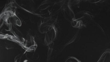 Smoke in motion