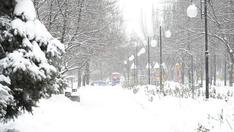 Snowfall over a city park
