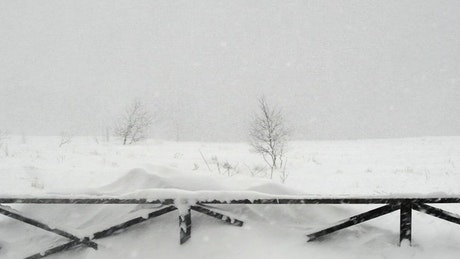 Snowstorm in the countryside