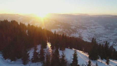 Snowy mountain pine trees receiving the sun