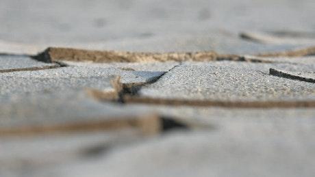 Soil cracks close up