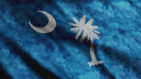 South Carolina flag in United States of America