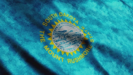 South Dakota State faded flag