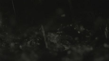 Splashing water drops in slow motion