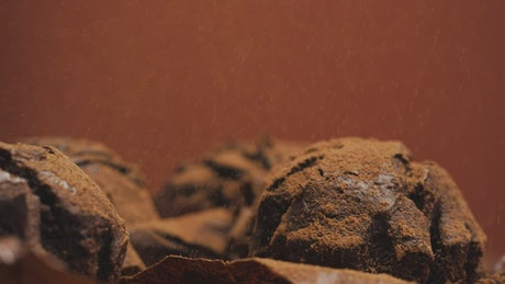 Spread chocolate powder over chocolate cupcakes