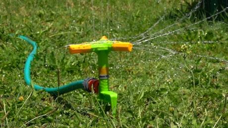 Sprinkler watering the grass