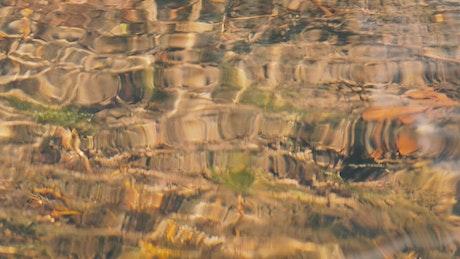 Stones underwater in creek