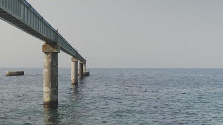 Structure in the sea