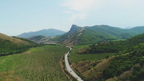 Summer landscape and road