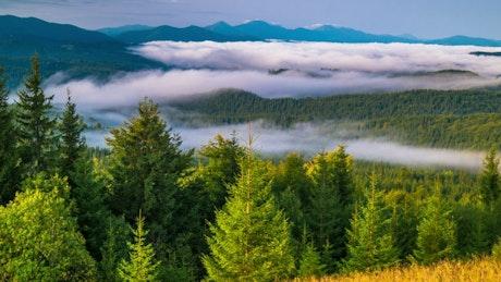 Sunrise in a foggy mountain