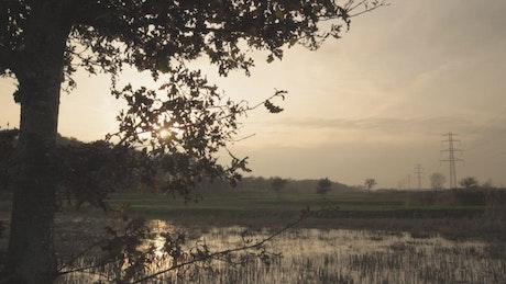 Sunset over marshlands