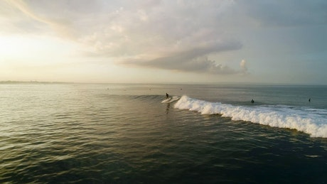 Surfer in action in the sea