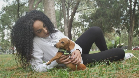 Taking care of your dog in the park