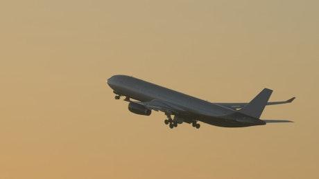 Taking off towards a golden sunset