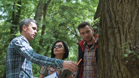 Team of researchers discussing about a tree