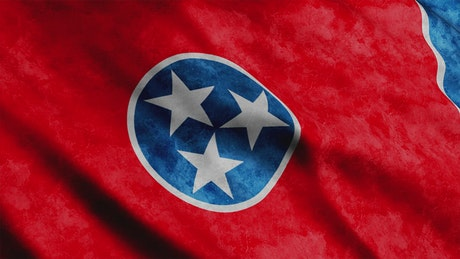 Tennessee State flag while waving, 3D