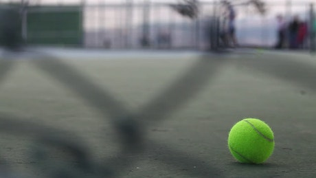 Tennis ball on the ground of a court
