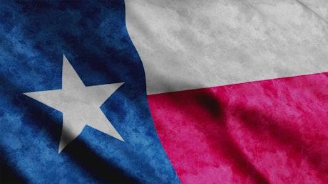 Texas State 3D flag