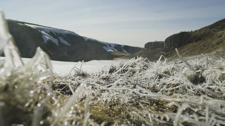 Thick frost covering grass