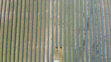 Top aerial shot of a field of solar panels