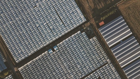 Top aerial view of a lot of greenhouses