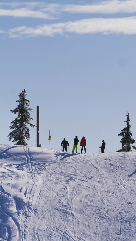 Tourists skiing on a snowy slope in Canada