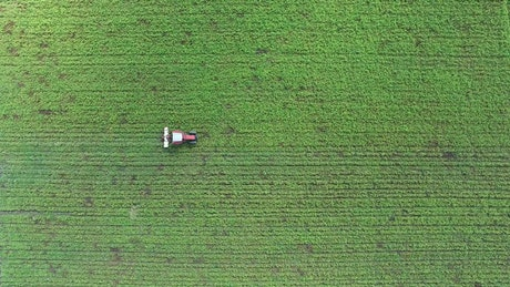 Tractor working on a green agricultural field