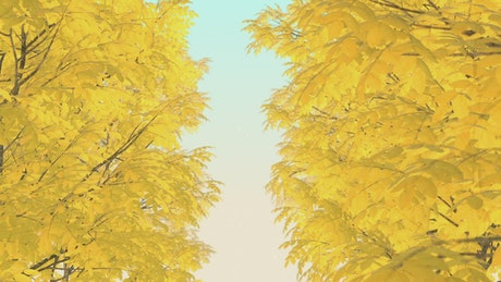 Trees with dry autumn leaves, 3D loop video