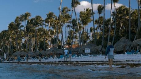 Tropical tourist beach, tilt shot