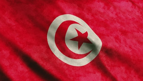 Tunisia flag from African continent