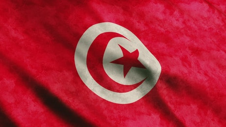 Tunisia flag, full screen