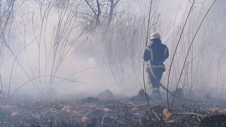 Two firefighters distinguishing forest fire