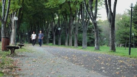 Two male friends walking down a quiet park