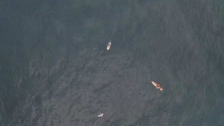 Two surfers in the middle of the ocean