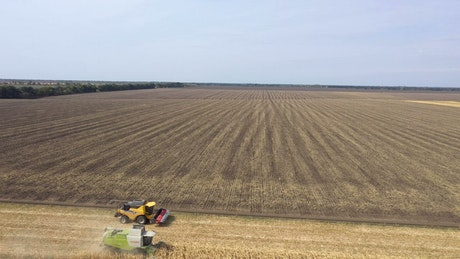 Two tractors harvesting large crop fields