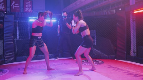 Two women fighting mixed martial arts