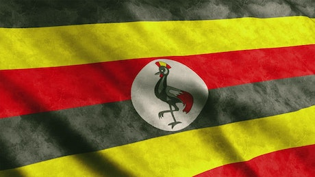 Uganda waving flag from African continent