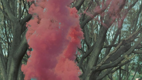 Urban trendy woman holding a smoke bomb