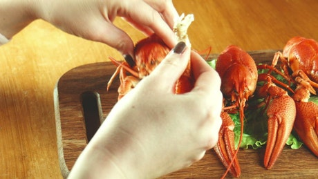 Using tools to eat lobster