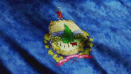 Vermont State faded flag waving